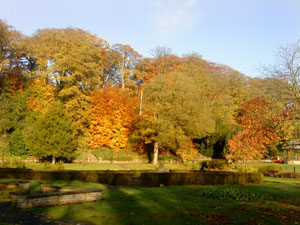 Shot across Congleton in Autumn, showing the beautiful showing the green, browns and russet colours of the trees.